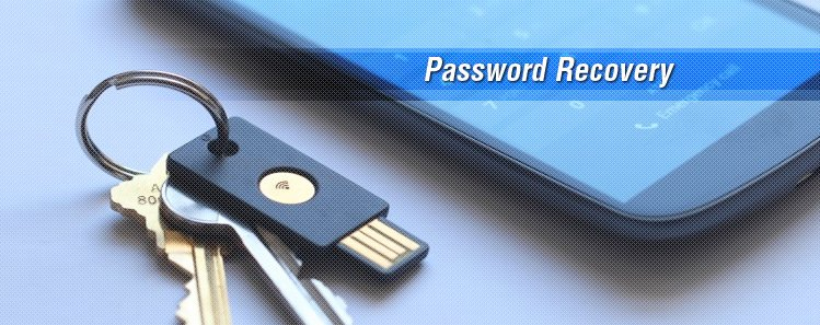 Reset Password Banner